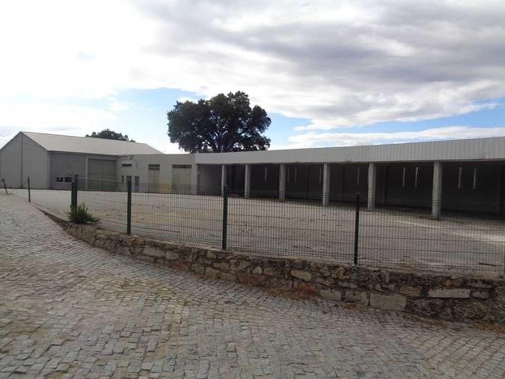 Ratoeira Celorico Da Beira casa imagem 65018