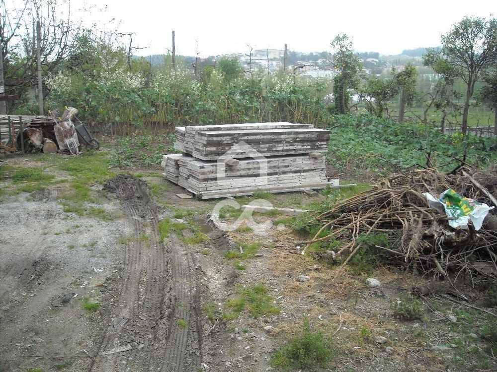 Lordelo Guimarães terrain picture 77534