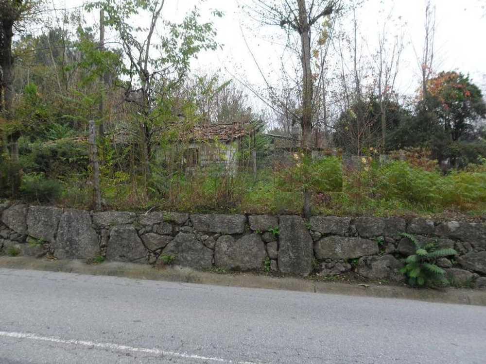 Brito Guimarães terrain picture 57207