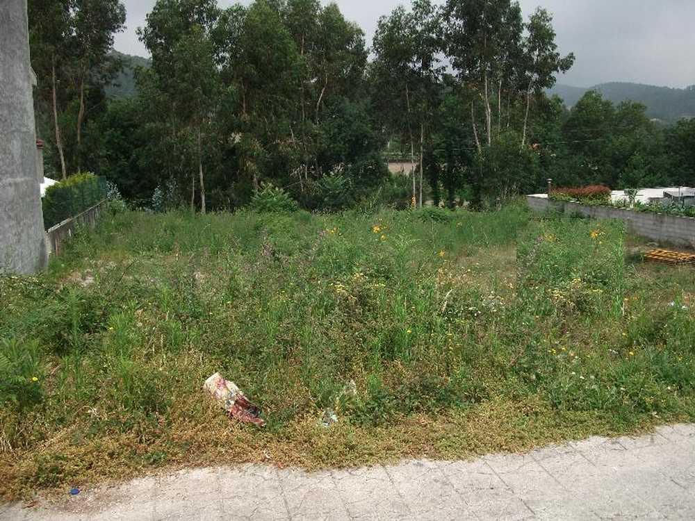 Brito Guimarães terrain picture 57315