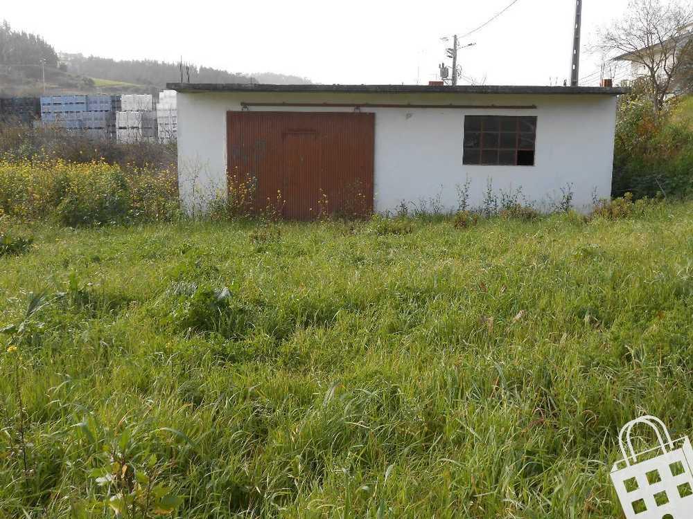 Vimeiro Alcobaça terrain picture 71109