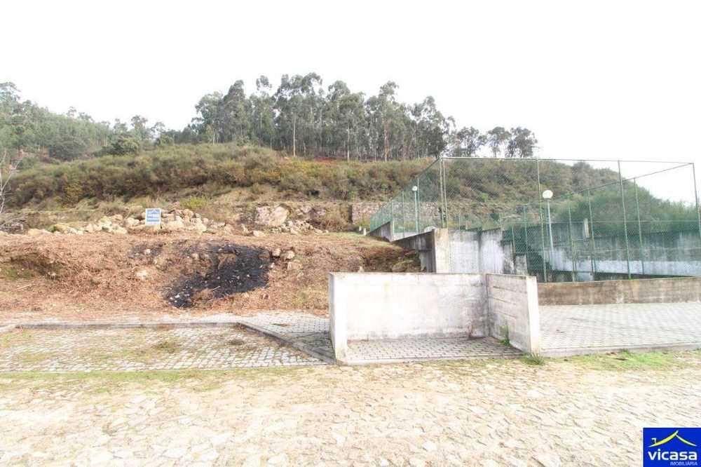 Barroselas Viana Do Castelo terrain picture 58408