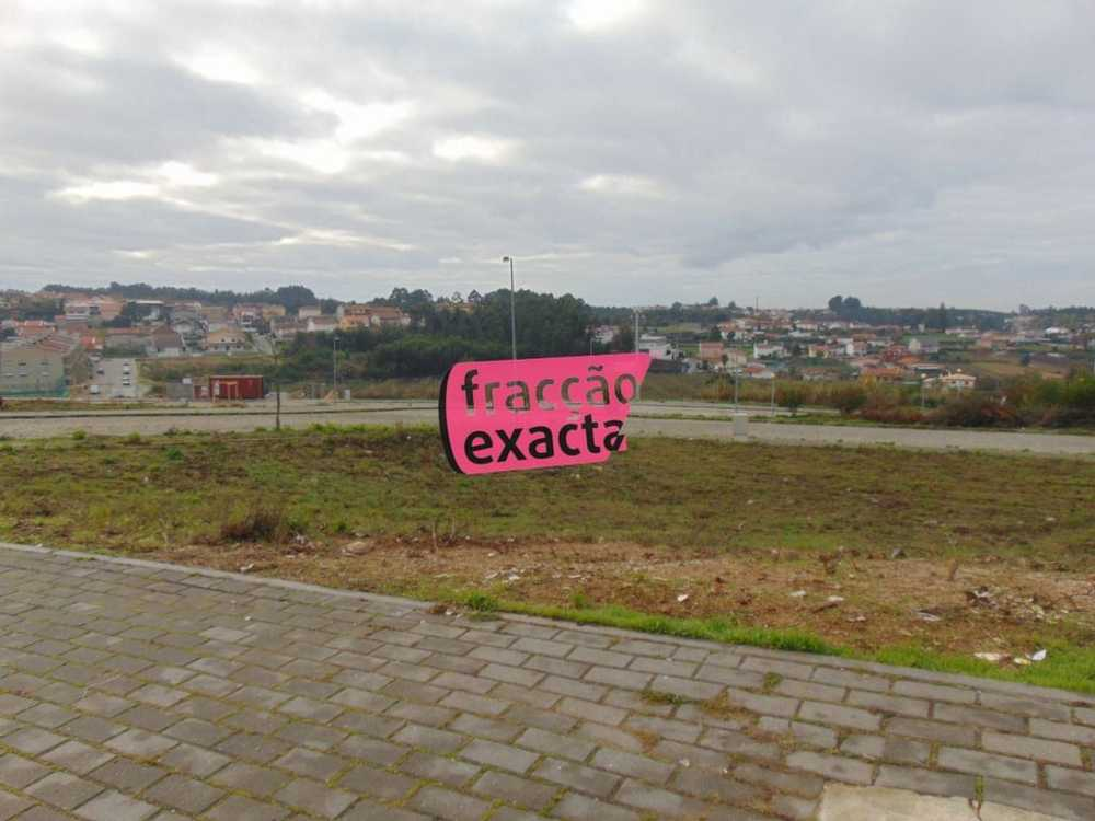 Sanfins Santa Maria Da Feira terrain picture 81215