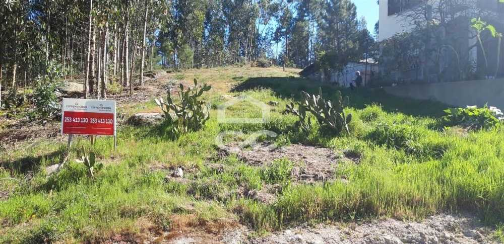 Santa Cristina Couto Santo Tirso terrain picture 77593