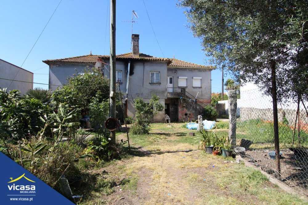 Mazarefes Viana Do Castelo house picture 58450