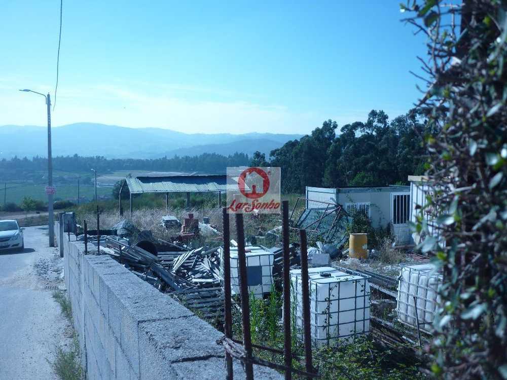 Vilar do Torno e Alentém Lousada terrain picture 57101