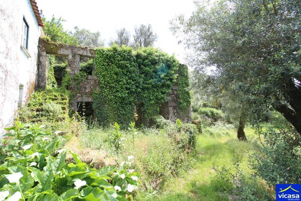 Deocriste Viana Do Castelo house picture 58553