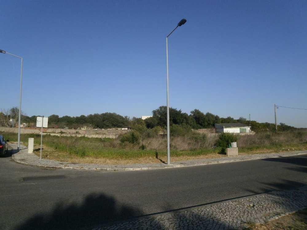 Alcabideche Cascais Grundstück Bild 55913