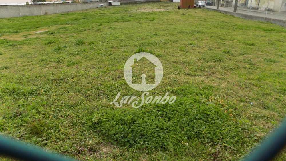 Gião Vila Do Conde terrain picture 56977