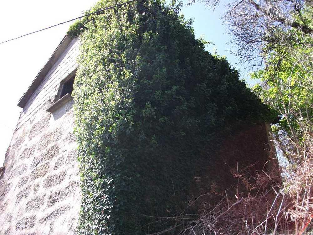 Guilhofrei Vieira Do Minho house picture 57919