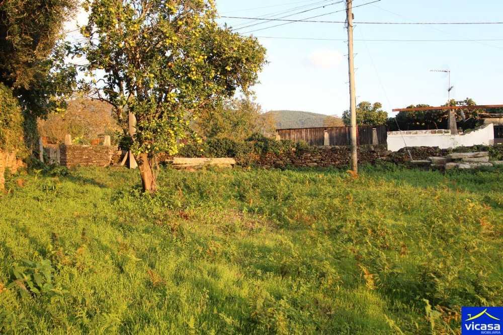 Argela Caminha terrain picture 58577
