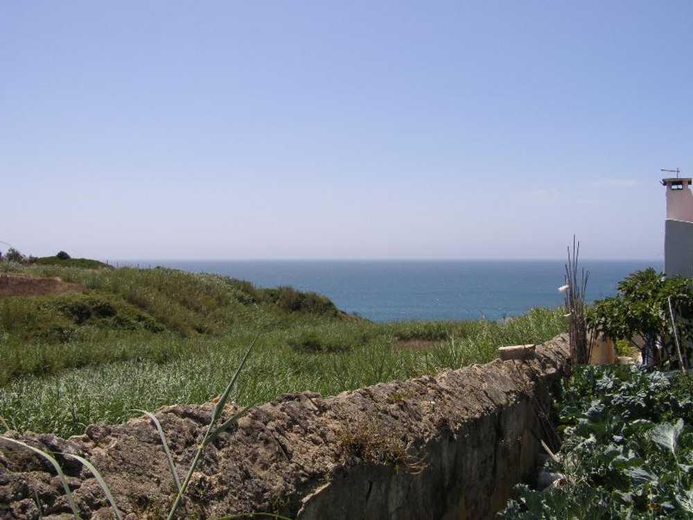 Atouguia da Baleia Peniche terrain picture 55600