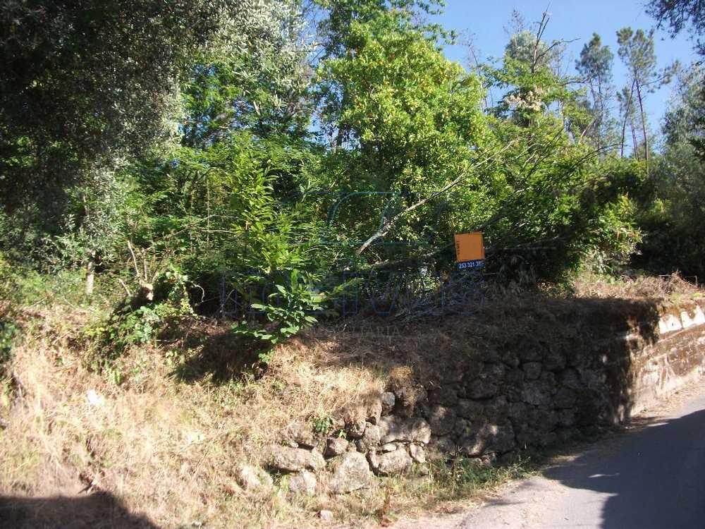 Barral Terras De Bouro terrain photo 60062