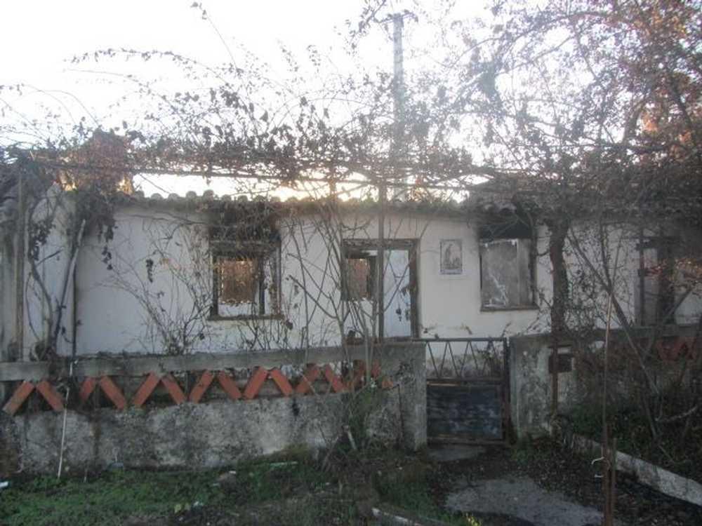 Sobreiro Vila Nova De Poiares house picture 64857