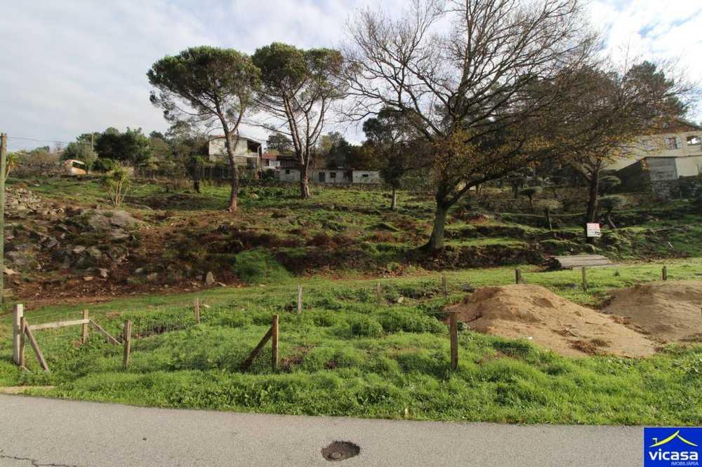 Barroselas Viana Do Castelo terrain picture 58516