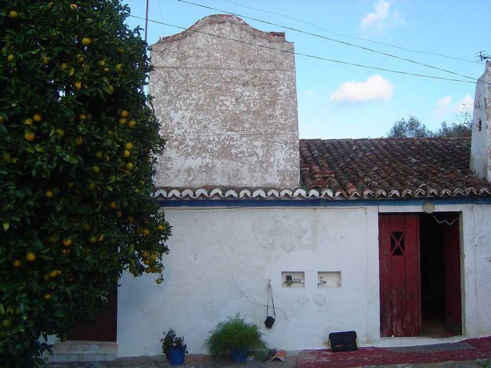 Loure Albergaria-A-Velha house picture 63129