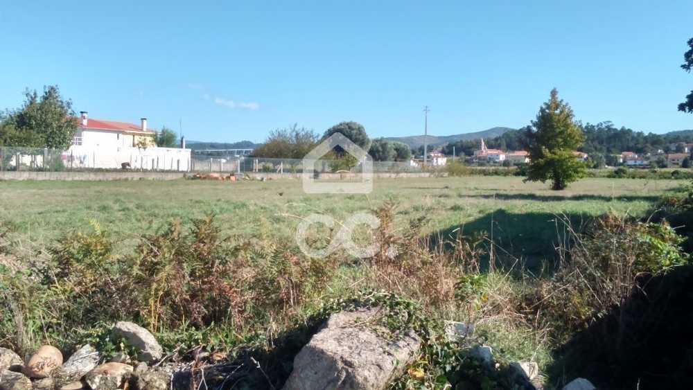 Campos Vila Nova De Cerveira terrain picture 79557