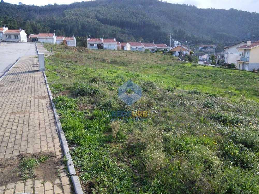 Nogueira Bragança terrain picture 68707