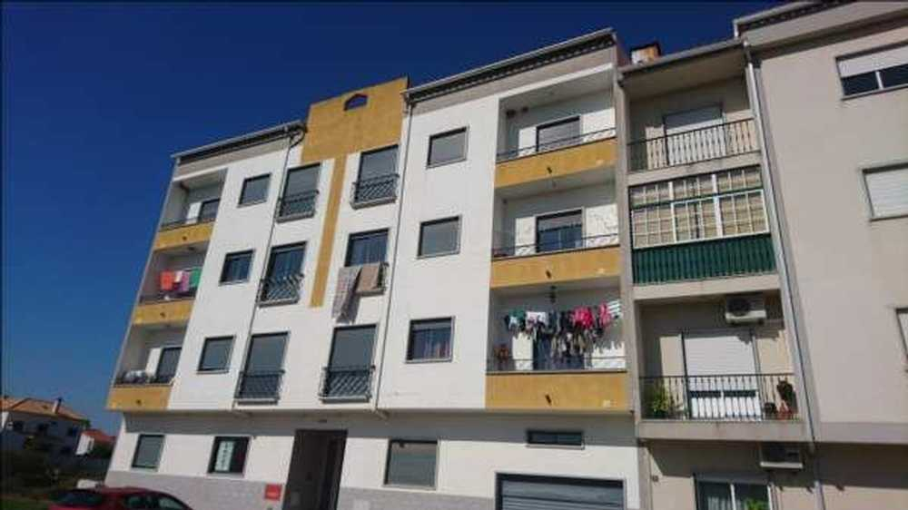 Alcains Castelo Branco apartment picture 63897