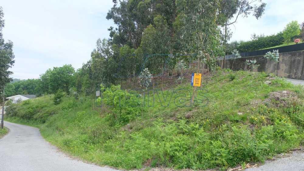 Chão Vila Verde terrain picture 60202