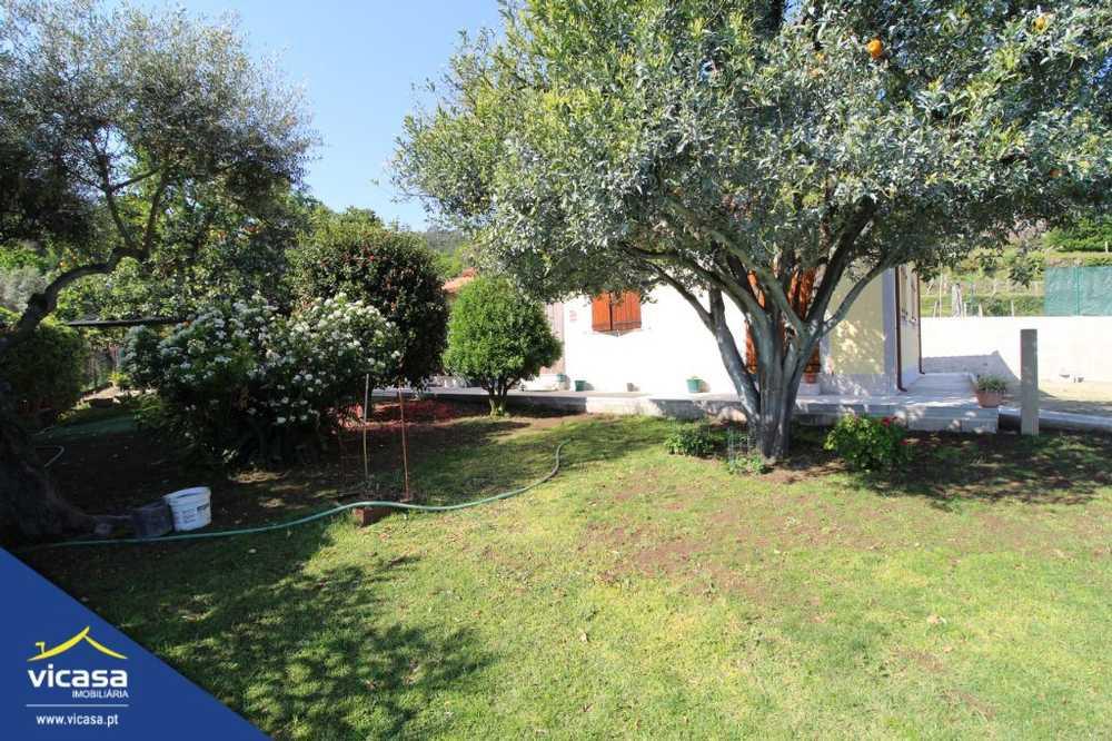 Deão Viana Do Castelo house picture 58514