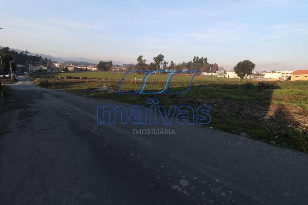 Pedome Vila Verde terrain picture 60264