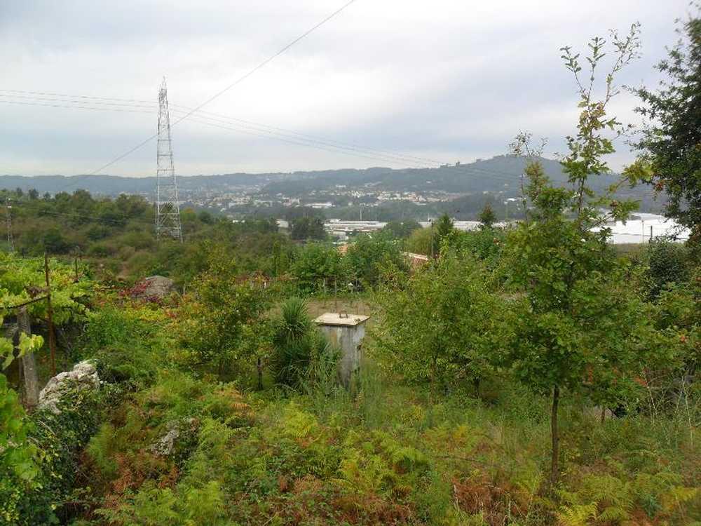 Sande São Lourenço Guimarães terrain picture 57376