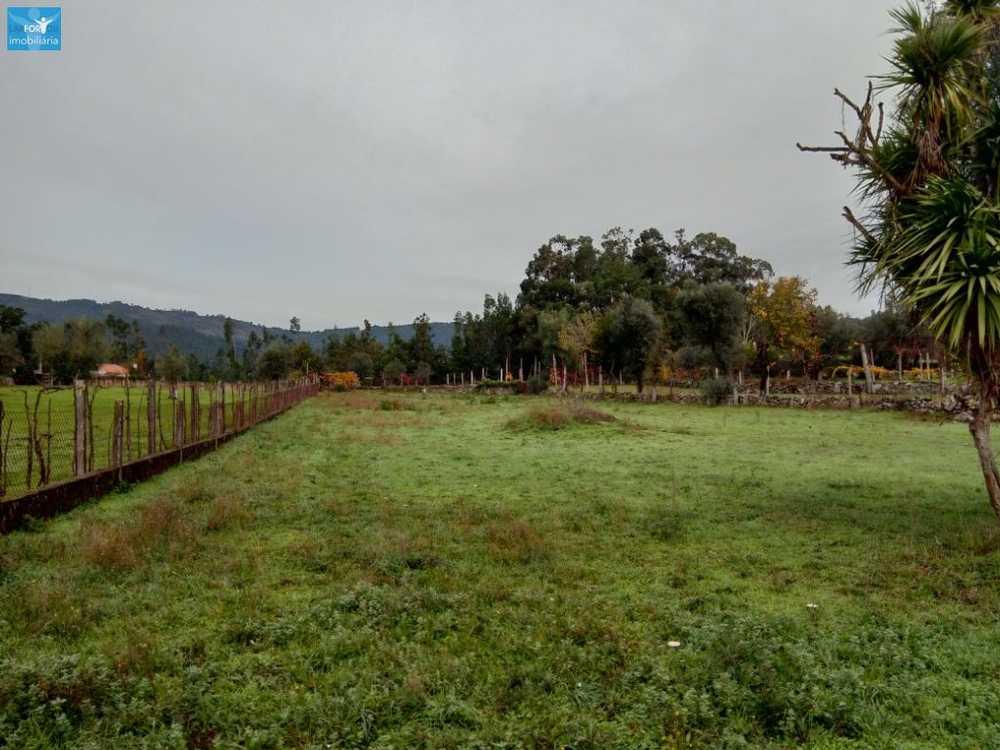 Verim Póvoa De Lanhoso terrain picture 58136