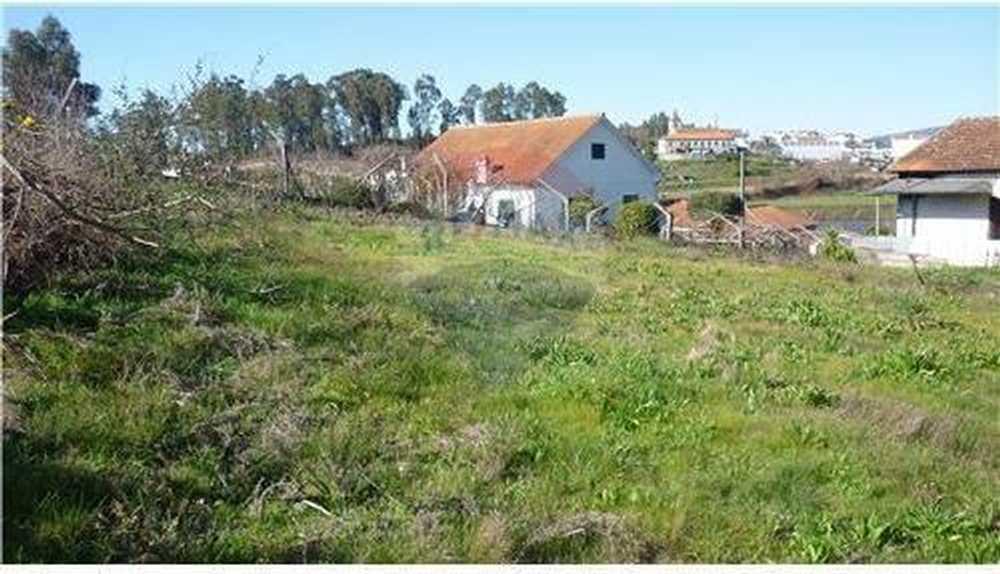 Lodares Lousada terrain picture 62357