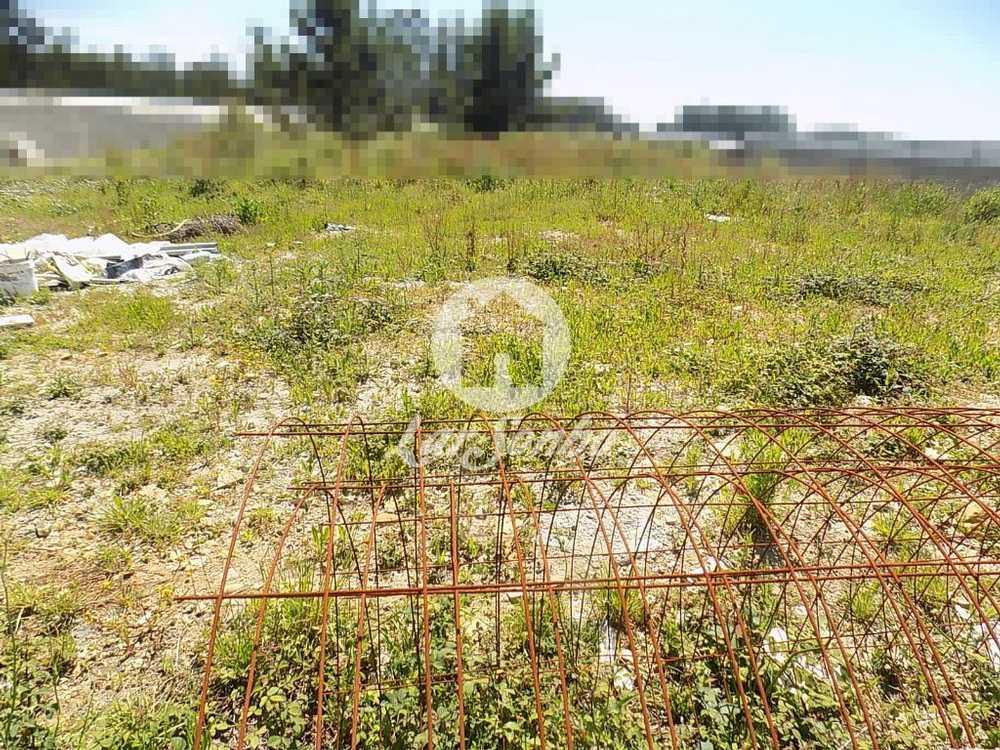Estela Póvoa De Varzim terrain picture 56286
