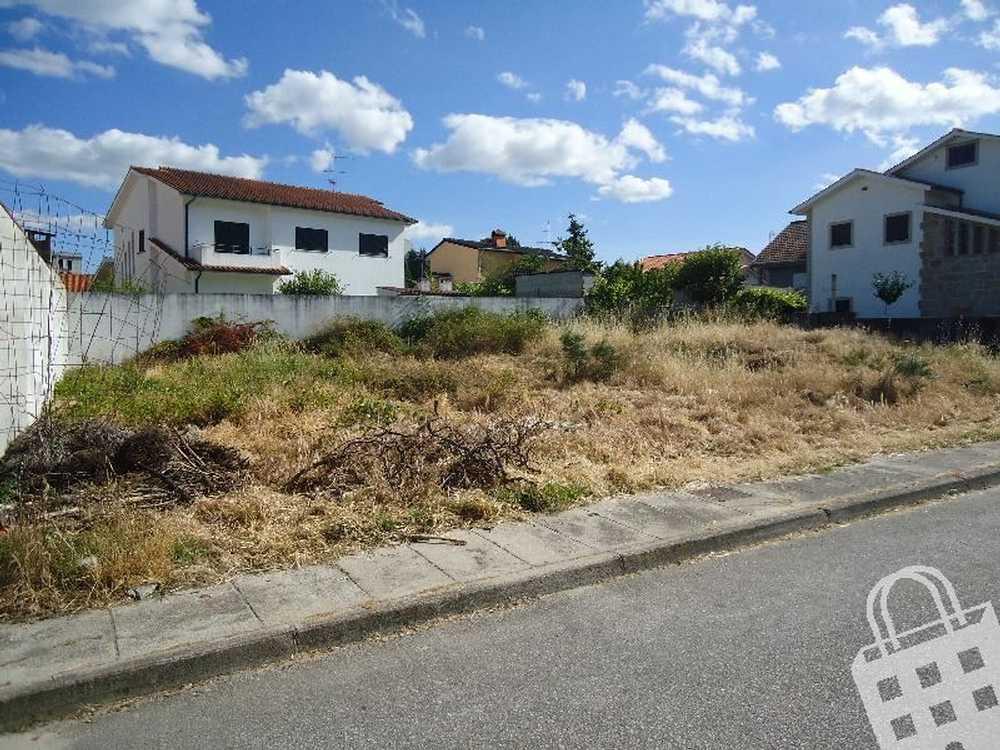 Santa Cruz Chaves terrain picture 74143