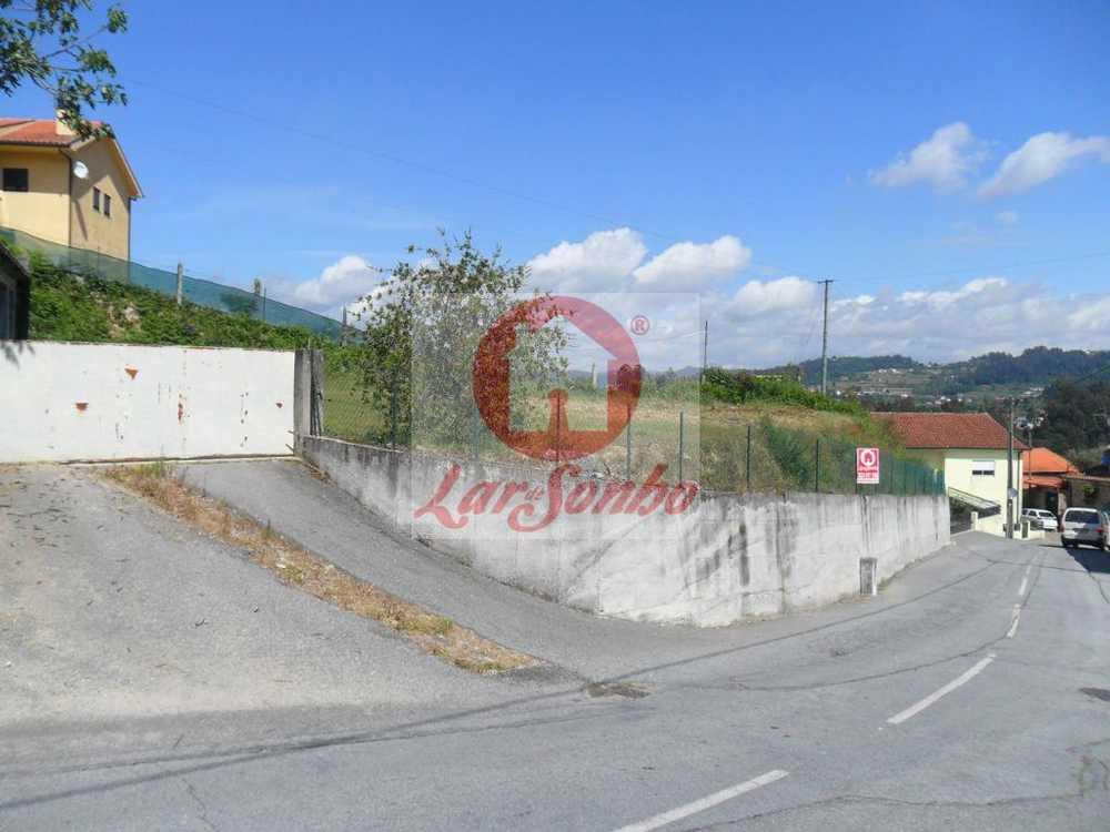 Tabuadelo Guimarães terrain picture 57504