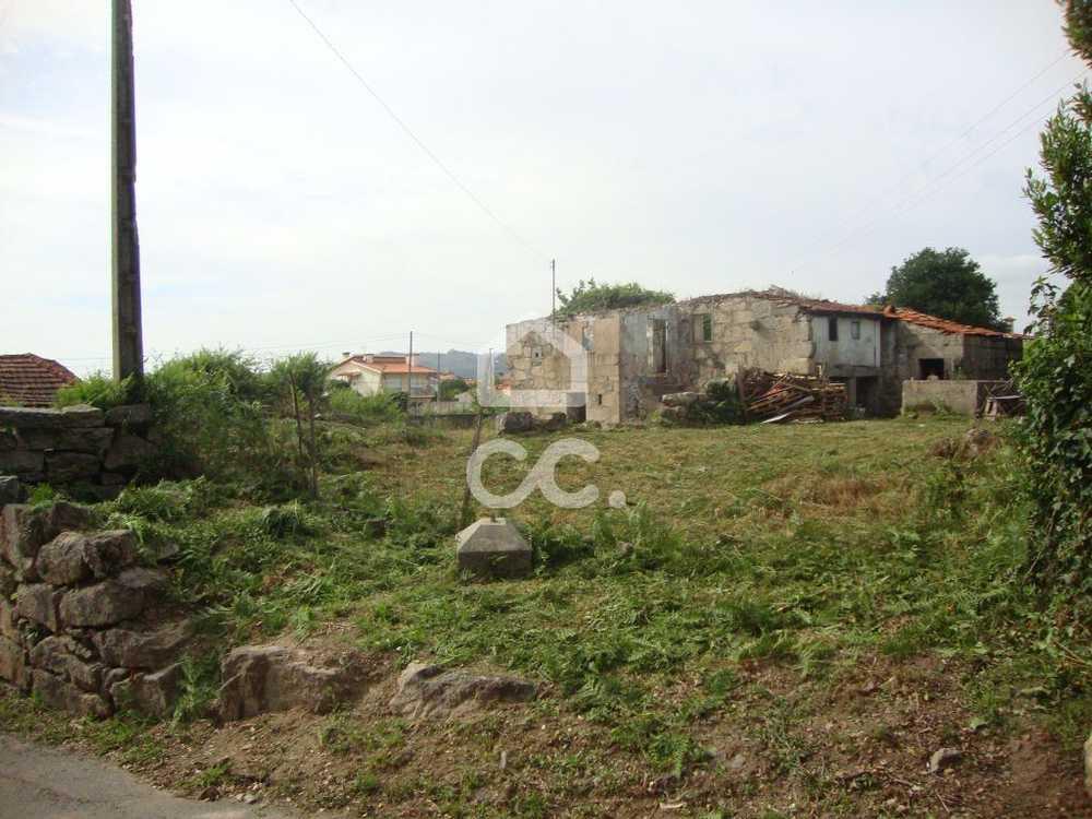 Novais Vila Nova De Famalicão terrain picture 74815