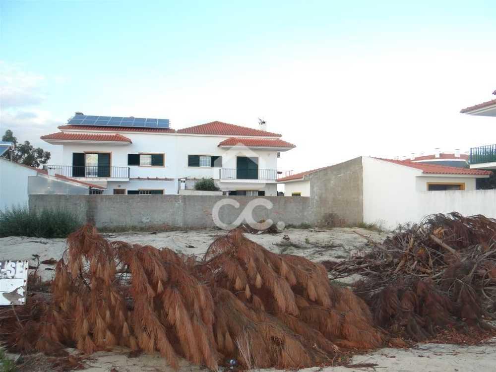 Montijo Montijo terrain picture 84105