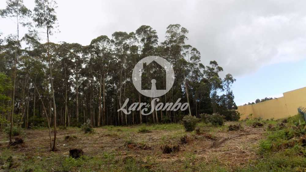 Guilhabreu Vila Do Conde terrain picture 76330