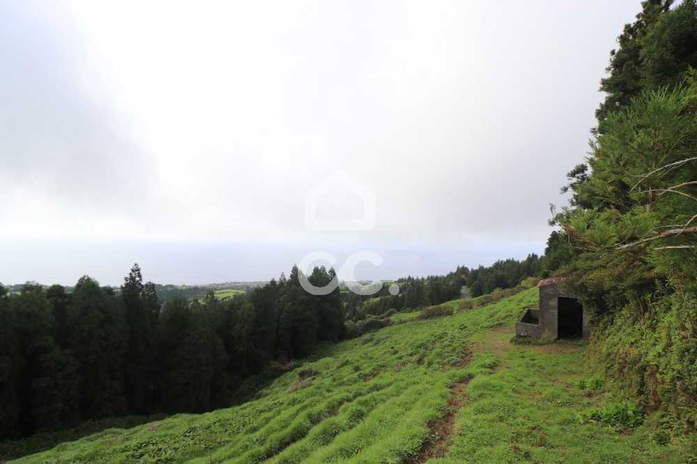 Candelária Ponta Delgada terrain picture 78990