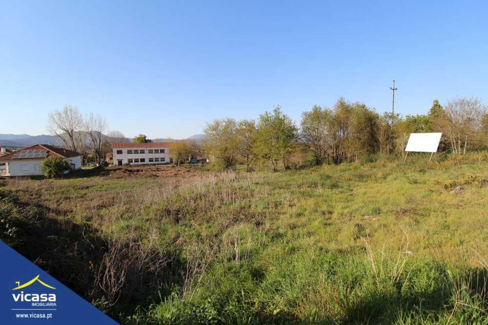 Deão Viana Do Castelo terrain picture 58454
