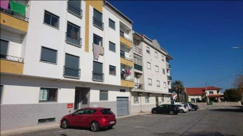 Alcains Castelo Branco apartment picture 63891