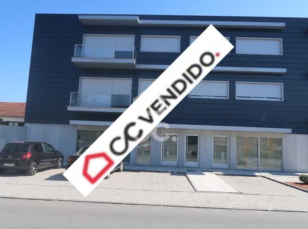 Centieira Paredes De Coura house picture 78005