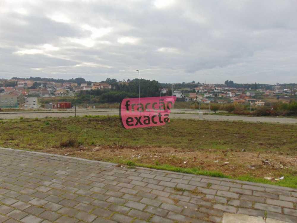Paçô Santa Maria Da Feira terrain picture 81210