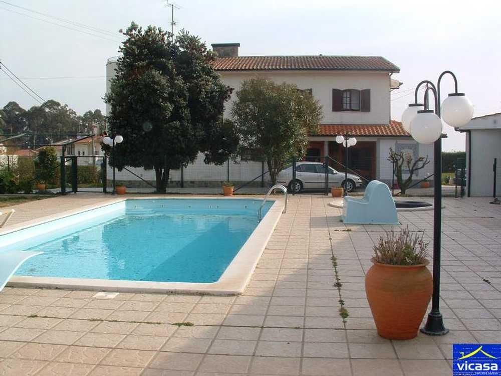 Carreço Viana Do Castelo house picture 58498
