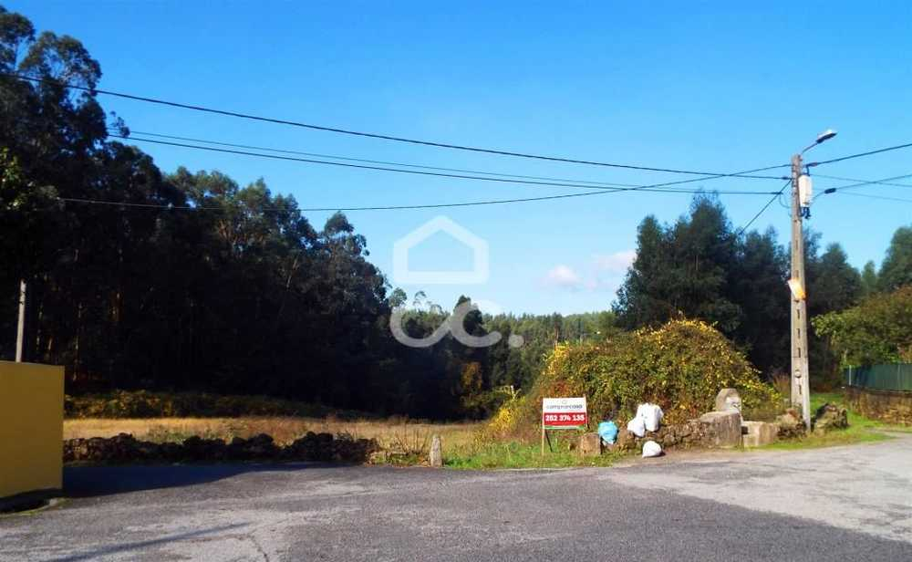 Vilarinho das Cambas Vila Nova De Famalicão terrain picture 74937