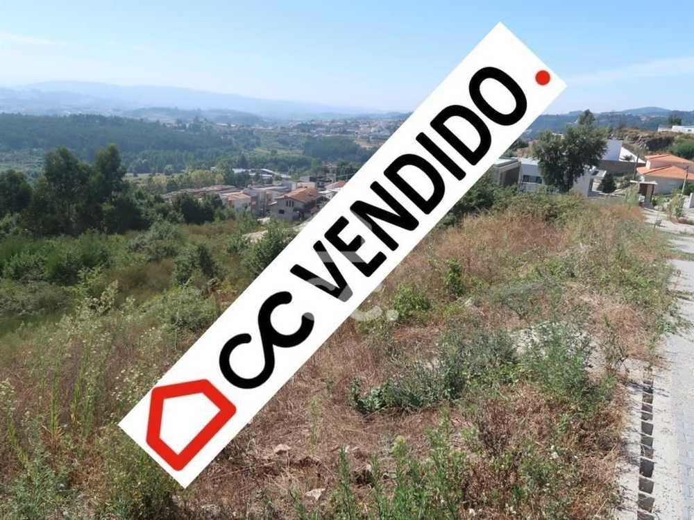 Revoreda Paredes De Coura terrain picture 77969