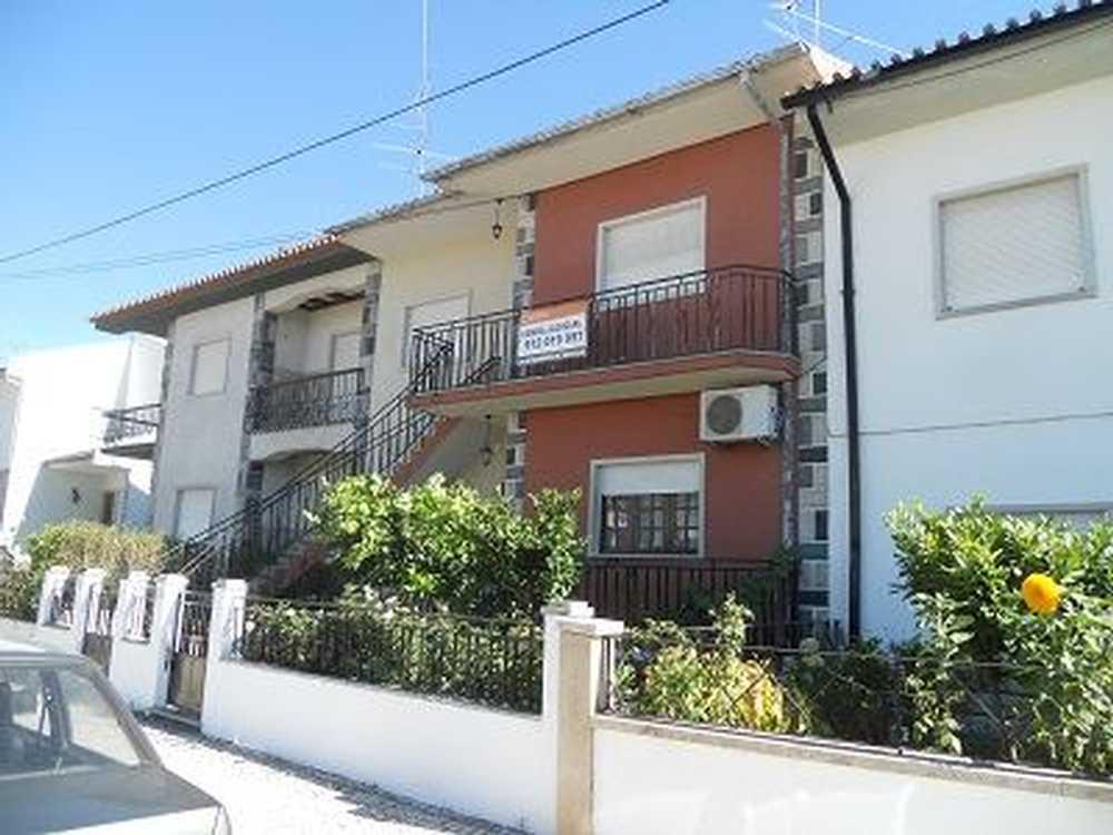 Alcains Castelo Branco apartment picture 65263
