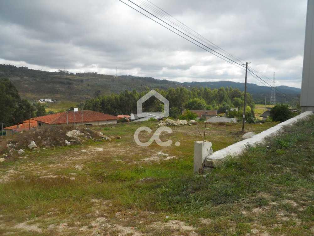 Guimarães Guimarães terrain picture 77413