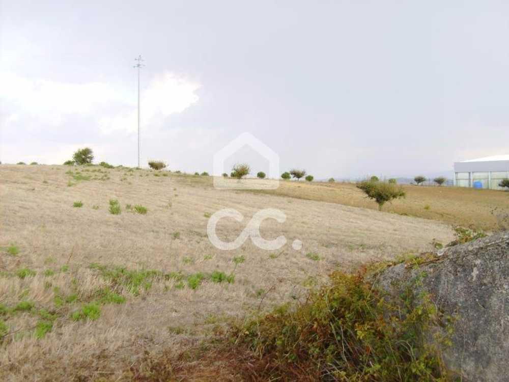 Roliça Bombarral terrain picture 78500