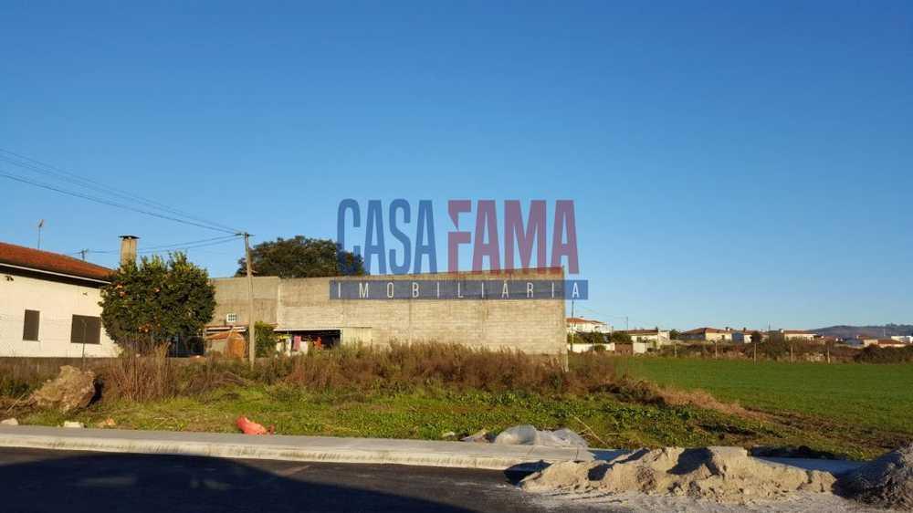 Landim Vila Nova De Famalicão terrain picture 82783