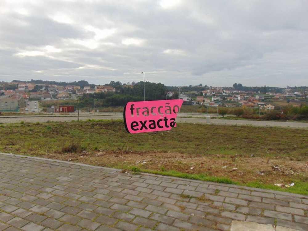 Oleiros Santa Maria Da Feira terrain picture 81216