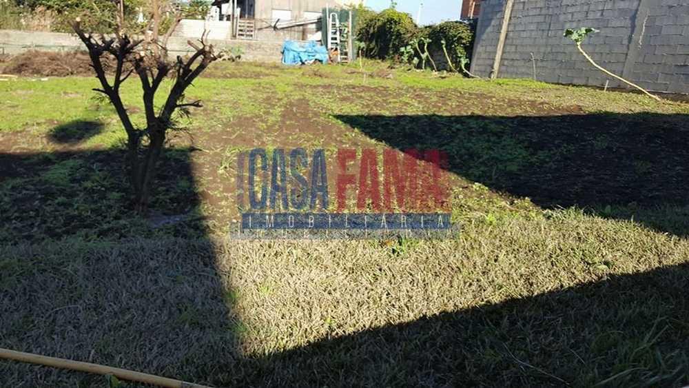Esmeriz Vila Nova De Famalicão terrain picture 82778
