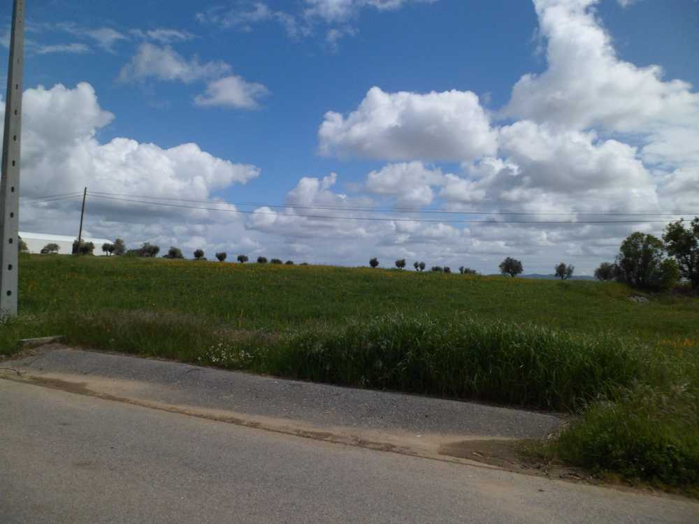 Évora Évora terrain picture 84908